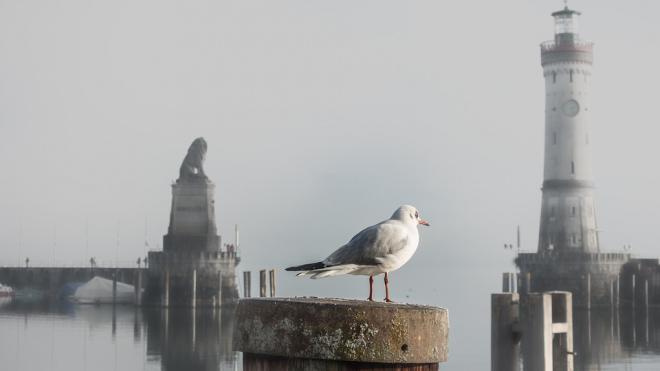"""В петербургском порту """"Морской фасад""""увеличат габариты судоходных путей"""