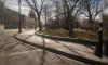 Петербуржцы делятся фотографиями пустых улиц города