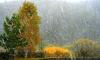 МЧС: в пятницу по Петербургу пройдет ливень со снегом
