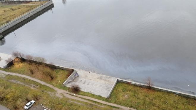 Петербуржцы обнаружили разлив нефти в устье реки Смоленки