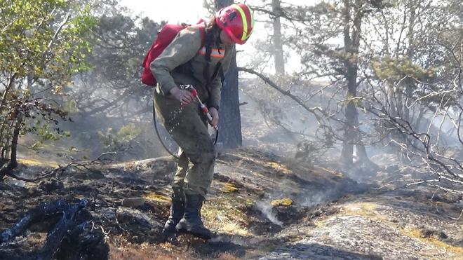 На Ладожском озере пожар почти уничтожил целый остров
