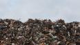 Петербург хочет построить мусорный полигон в Новгородской ...
