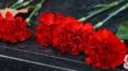 В Петербурге умерших от COVID-19 похоронят в цинковых ...