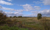 Неиспользуемые в Ленобласти земли сельскохозяйственного назначения поставят на учет
