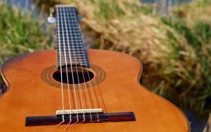На выходных на берегу Финского залива состоится слет любителей авторской песни