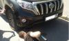 Петербургской общественнице, боровшейся с нарушениями в «Гарден Сити», порезали колеса
