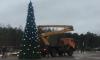 В Сосновом Бору с ёлки украли новогодние украшения