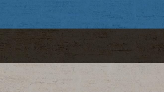 Эстонский генерал-майор призвал увеличить расходы на оборону из-за России