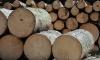 Полиция дозвонилась до раба Албека с лесопилки под Иркутском