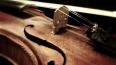 Неизвестные похитили у петербуржца скрипку за 3 тыс. ...