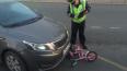 На севере Петербурга маленькая велосипедистка попала ...