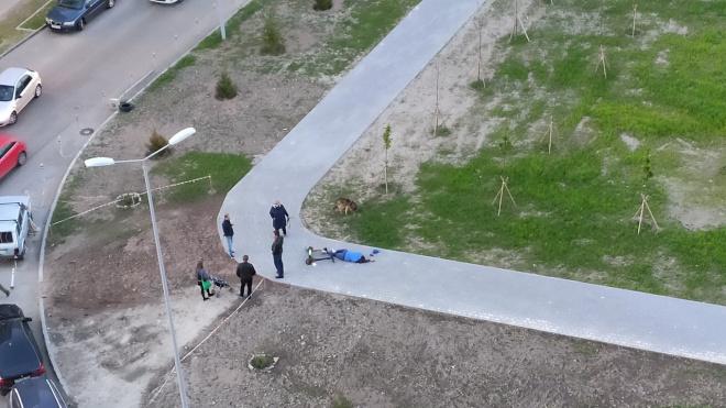 На Васильевском острове мужчина сорвался с электросамоката