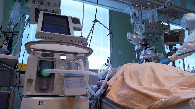 За сутки в Петербурге коронавирус унёс жизни 15 человек