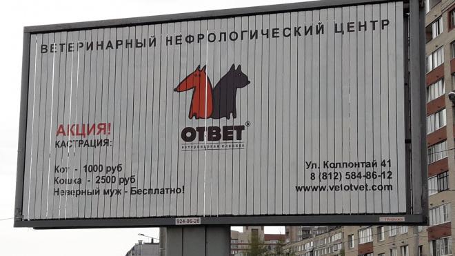 На ветеринарную клинику в Петербурге, которая предлагала кастрировать неверных мужей, завели уголовное дело
