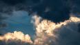 В понедельник Петербург ожидает штормовой ветер
