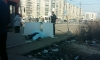 Петербуржцев напугал труп человека на трамвайной остановке на проспекте Наставников