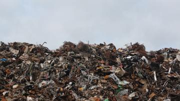 В Петербурге с начала года убрали мусор по 138 адресам