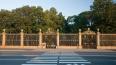 Летний сад не откроется в мае впервые за 78 лет