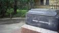 В Смольном обсуждают легализацию памятника человеку-неви...
