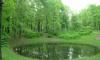 Петербуржцы наткнулись на онаниста в парке Лесотехнической академии