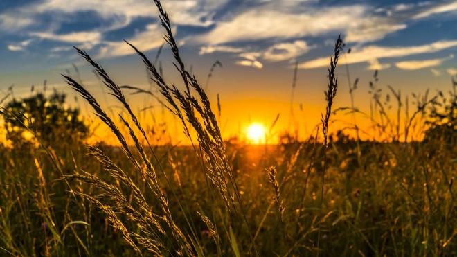 Росгидромет составил рейтинг самых солнечных городов России