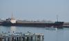 В морском порту Петербурга под бананами нашли наркотики на 150 млн
