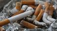 Госдума одобрила проект о возвращении комнат для курения...