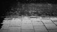 В Петербурге пятница будет дождливой