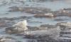 Спасатели просят петербуржцев не выходить на лед