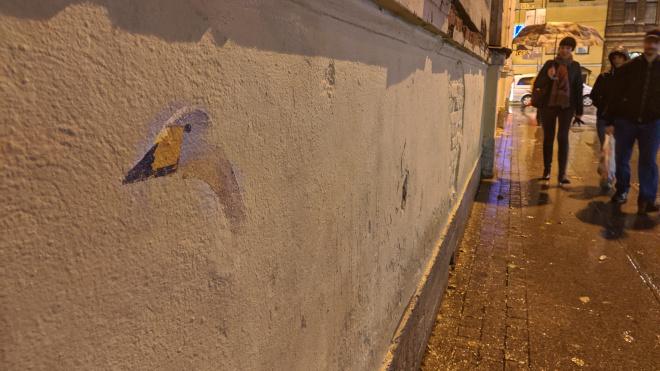 На месте закрашенных фресок в переулке Радищева появился гусь