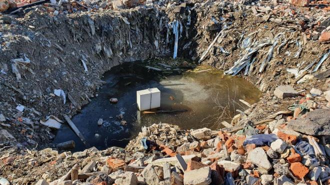 В Кудрово обнаружена радиоактивная свалка с ртутными лампами и мертвыми утками