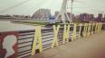 Петербуржцы переименовали мост Кадырова в Ахматовский
