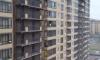 Гуляющая снаружи балкона на 18 этаже петербурженка переполошила жителей новостроек Парнаса