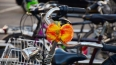 Велосипеды захватили дороги: в центре Петербурга затрудн...
