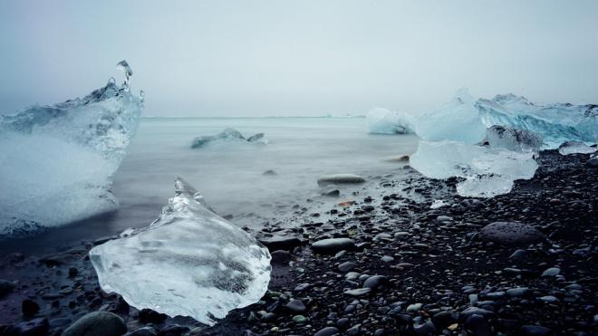 Ученые СПбГУ нашли организмы, которые могут очистить Арктику от нефтяных отходов