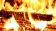 В Нижегородской области пожарные вытащили из огня ...