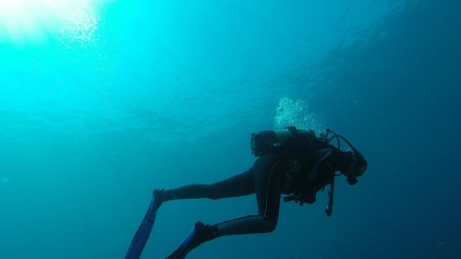 Под Анапой погибла женщина-дайвер с научного судна