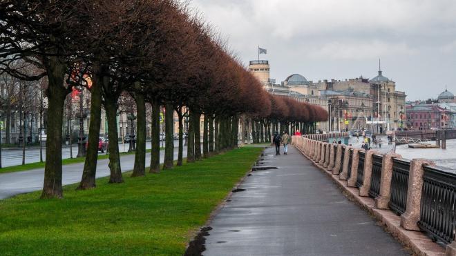 В Неве после непогоды снижается уровень воды