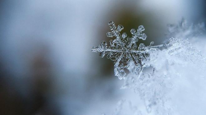 В среду в Петербурге обещают снегопад и дождь