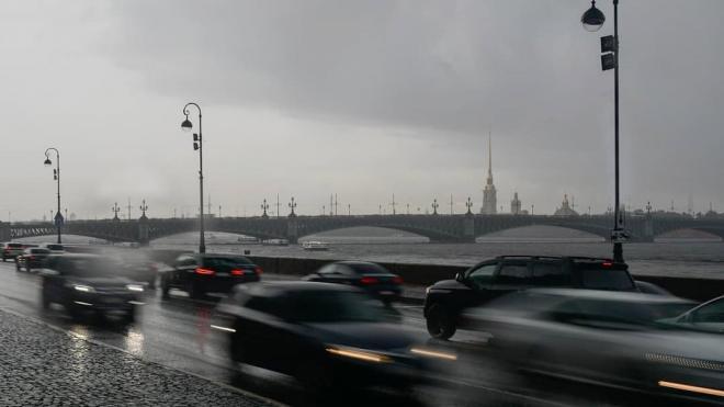 В Петербург возвращаются грозовые дожди, но жара пока не сдается