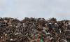 В Выборгском районе на переходный период плата за мусор снижена
