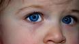 В Никольском пятилетняя девочка выстрелила себе в ...