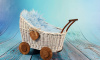 Няня не удержала коляску и двухлетний малыш оказался в Неве