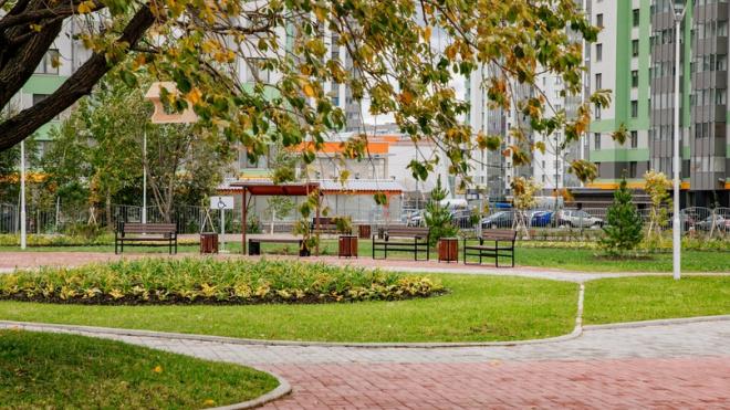 В Петербурге подведены итоги работ по благоустройству города