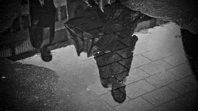 Холодный фронт принес в Петербург дожди и сильный ветер