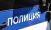 Петербуржца задержали в Петергофе почти с килограммом гашиша в кармане