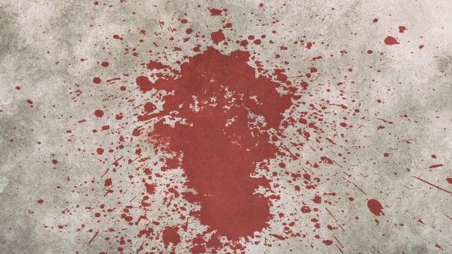 На юге Петербурга нашли тело застреленного мужчины