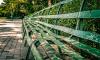 Петербуржец намерен оспорить в суде запрет на посещение парков