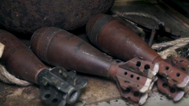 В Колпинском районе нашли мины и снаряд времен ВОВ