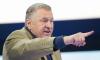 Жириновский назвал требования Степаненко в бракоразводном процессе некрасивыми